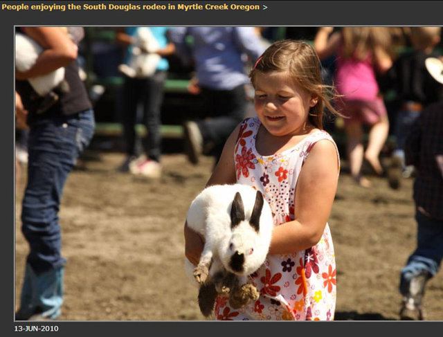 stop using live rabbits as games for children