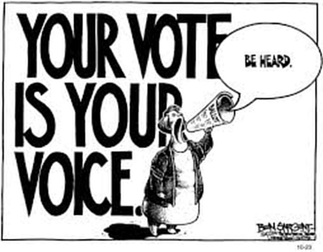 Petition for Absentee Voting in Indian Elections