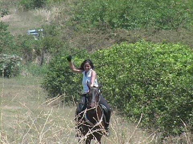stop Farida Khan from abusing horses