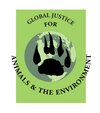 Global Justice for Animals and the Environment