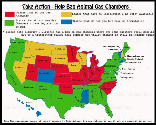 Take Action - to help ban Animal Gas Chambers