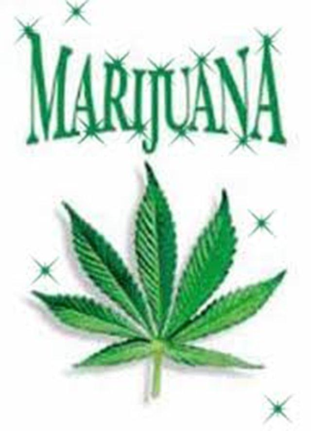 Legalize Marijuana In Illinois