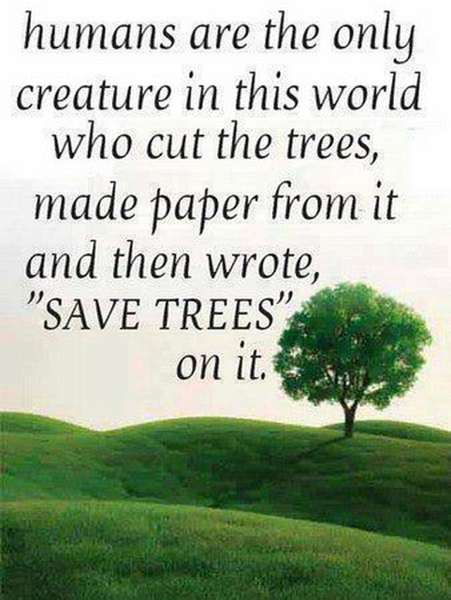essay on save earth save water