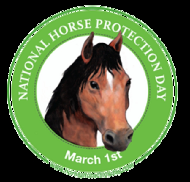 Help us Raise $2500 for National Horse Protection Day