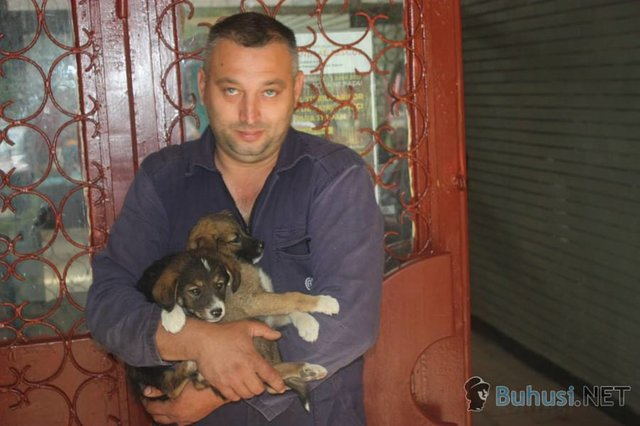 support spay-a-thon in Buhusi, Romania