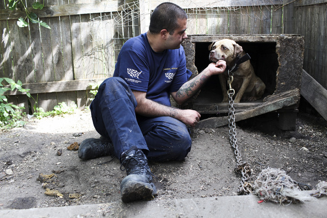 HSUS Humane Heroes: 2011 Victories for Animals