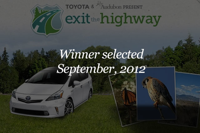 CAMPAIGN ENDED: Exit the highway and drive the scenic route and enter to win a new Prius v!