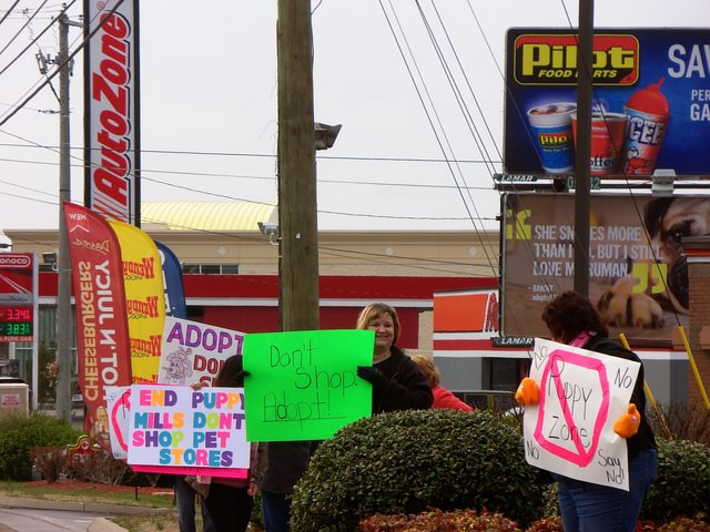 Protest Puppy Zone in Knoxville, TN