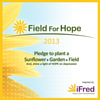 iFred, International Foundation for Research and Education on Depression