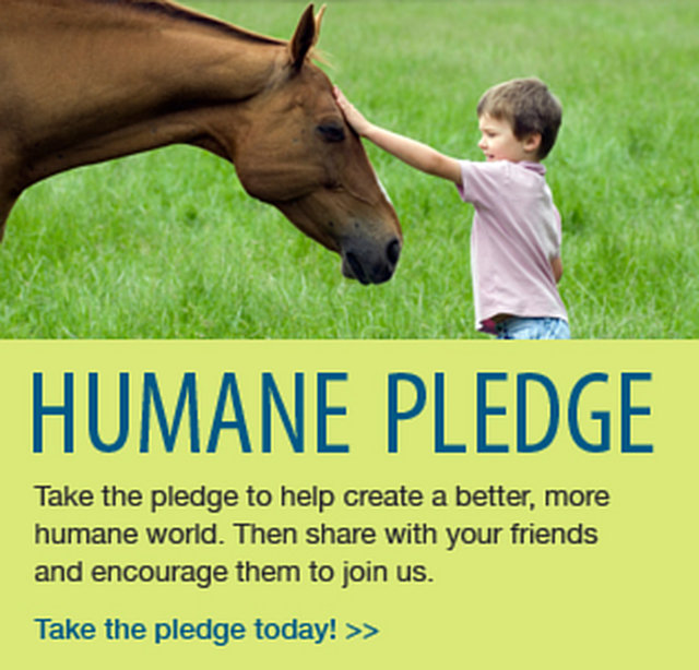 support the humane pledge
