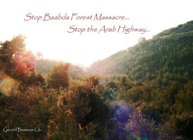 Stop Arab Highway @ Baabda Forest
