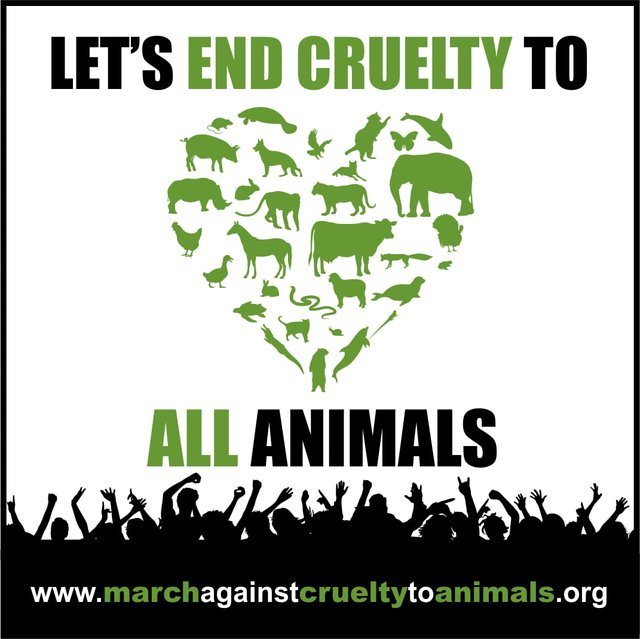 Join the MARCH AGAINST CRUELTY TO ANIMALS