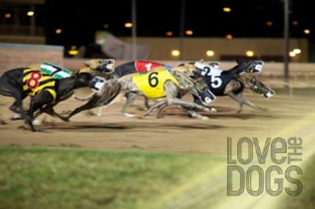 Horse/Dog racing and Betting in Wyoming