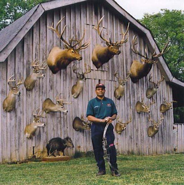 ACTION ALERT:  Ban Sport Hunting