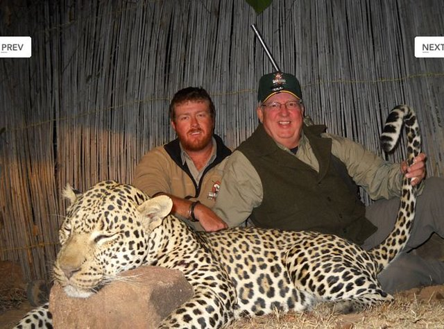 Stop hunting endangered animals for profit&sport in Africa