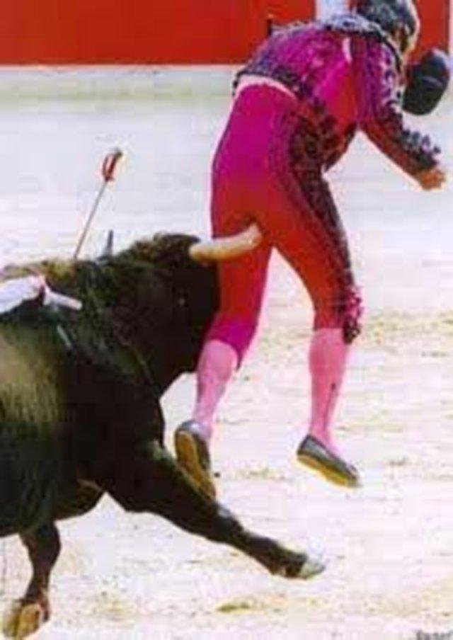 Acceptem curses de braus a Barcelona, només si els pro-taurins fan de braus