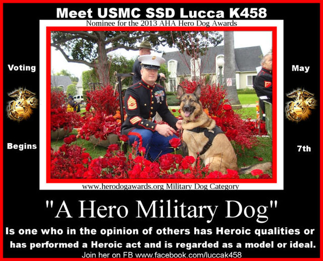 marine hero k9 lucca causes