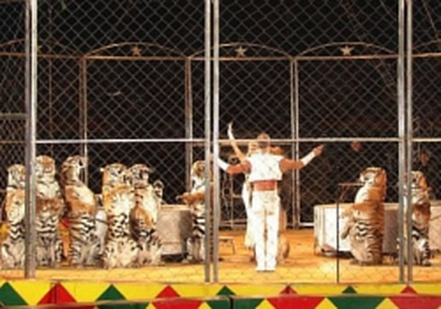stop the animal circus in Canada