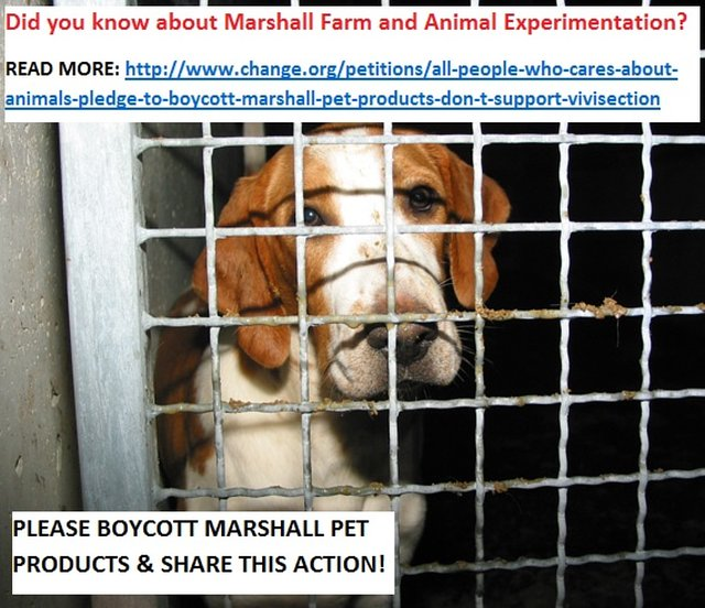 boycott Marshall Pet Products