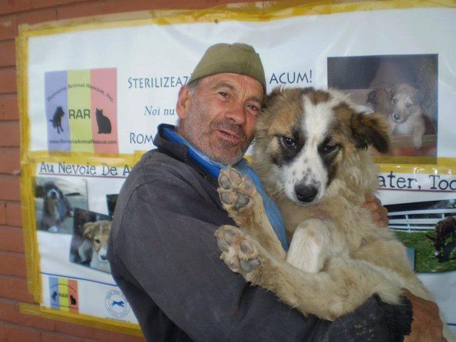support animal rights Romania