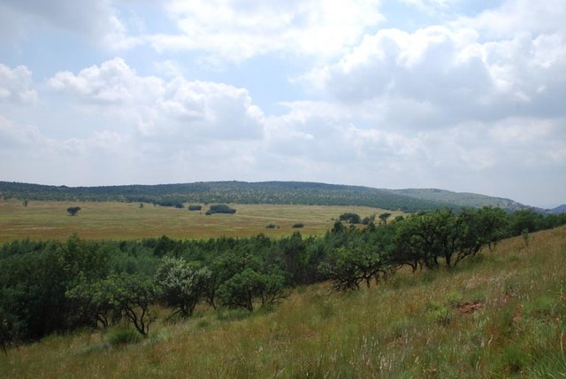 protect the Krugersdorp Ridges from development