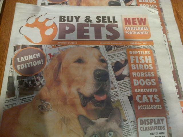 Stop JunkMail & Gumtree Selling Animals Online