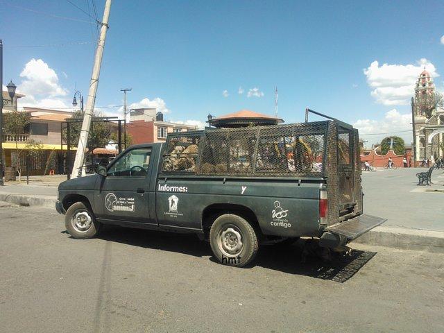 Destitución e Inhabilitacion de Ma. Elena Chiquillo Directora CSYBA Toluca
