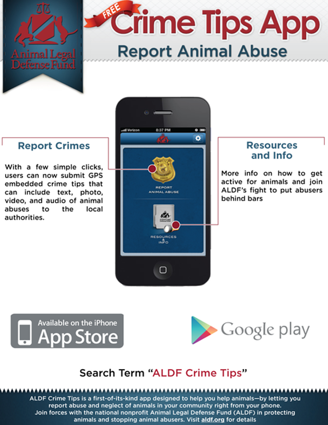 Help Abused Animals with Your Smartphone!