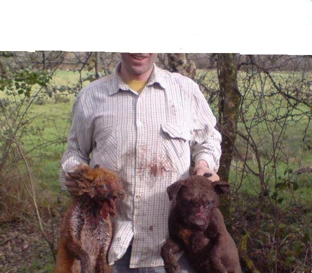 ban all animal cruelty/killing groups on Facebook