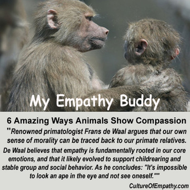 support empathy and compassion for animals