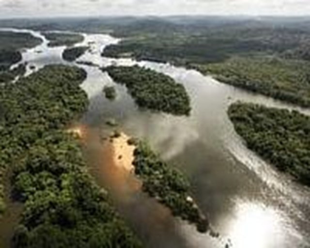 Demand A Stop To The Belo Monte Dam.