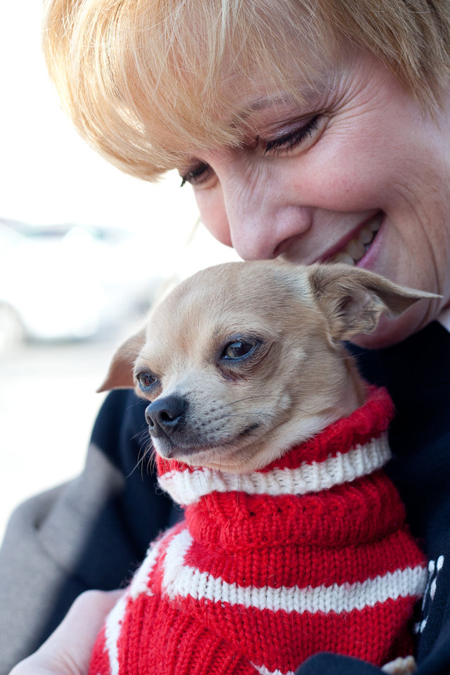 Explore volunteer opportunities at your local animal shelter