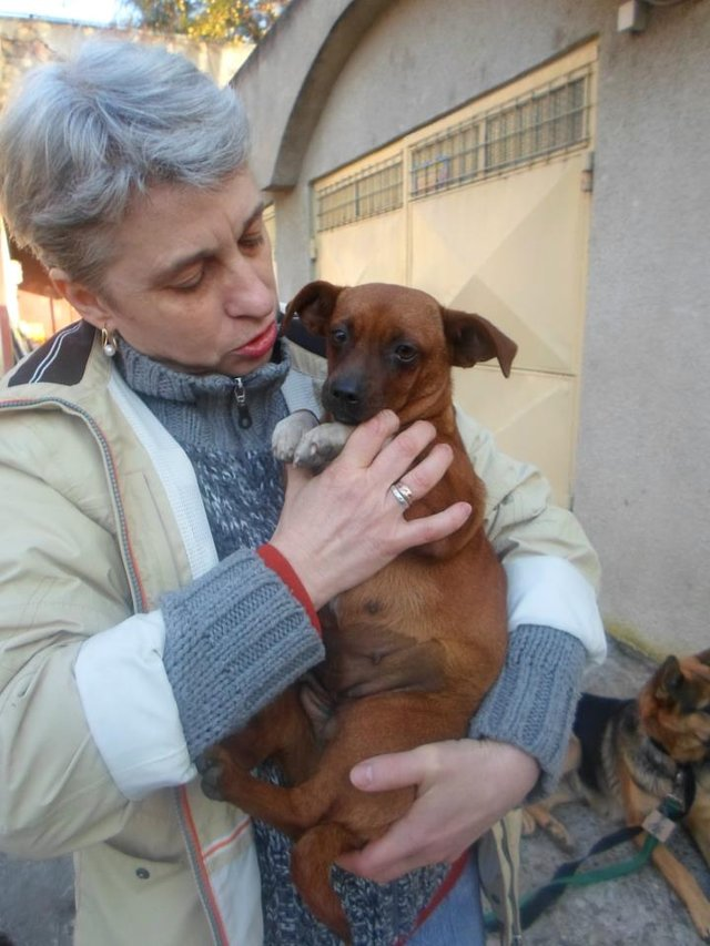 Romania Animal Rescue January Newsletter is here!