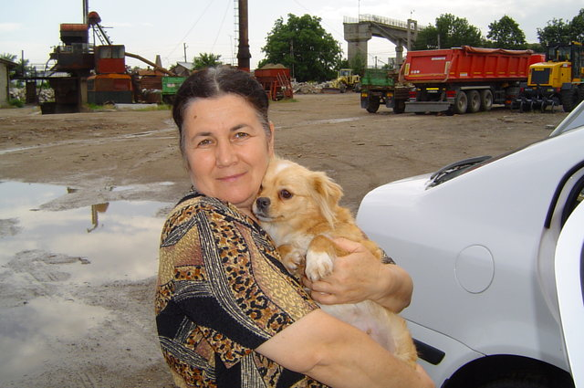 thank Ramnicu Sarat, Buzau, Romania for spay work