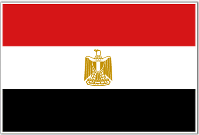 take back the COUP and reset Egypt DEMOCRACY