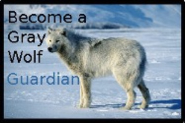 Gray Wolf Guardians