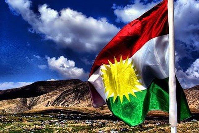 Syrian Kurd's representation