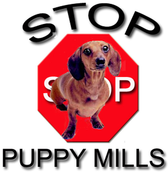 Make Puppymills Illegal in Canada