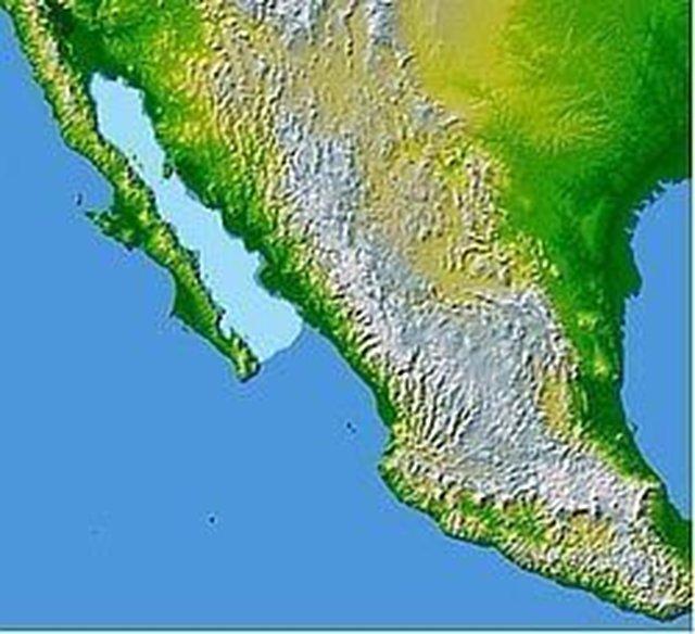 S.O.S GOLFO DE CALIFORNIA PARA PARQUE NACIONAL !!! SEA OF CORTEZ FOR NATIONAL PARK !!