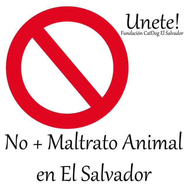 Ley de Protección Animal en EL Salvador