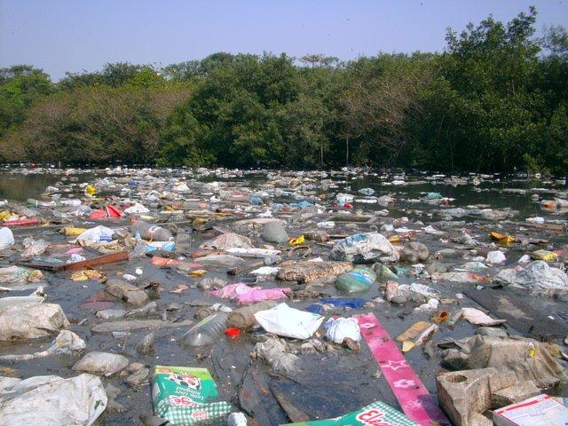 PETIÇÃO: Implantação do Sistema Ambiental de Coleta de Resíduos no Estuário de Santos