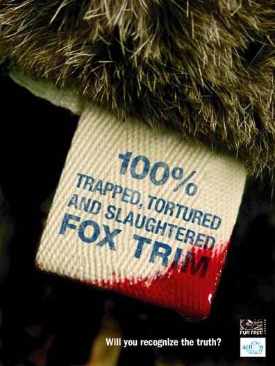 fur skin industry essay