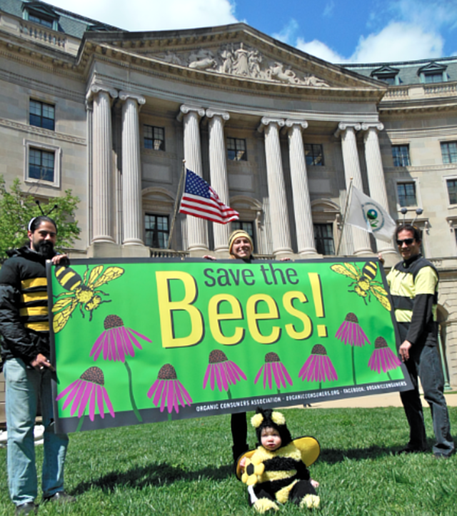 Ban the use of neonicotinoid pesticides before they devastate bee populations in the USA
