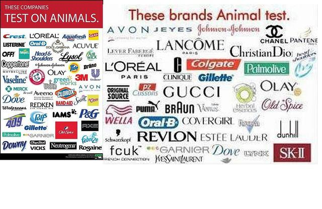 change one household product to a cruelty-free brand