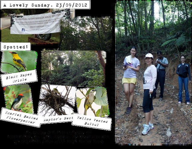 save the forest of Wangsa Maju Section 10