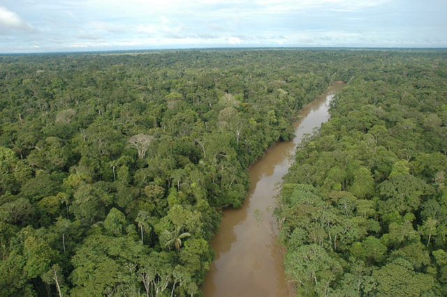 """Ecuador Tribe Will """"Die Fighting"""" to Defend Rainforest #IdleNoMore"""