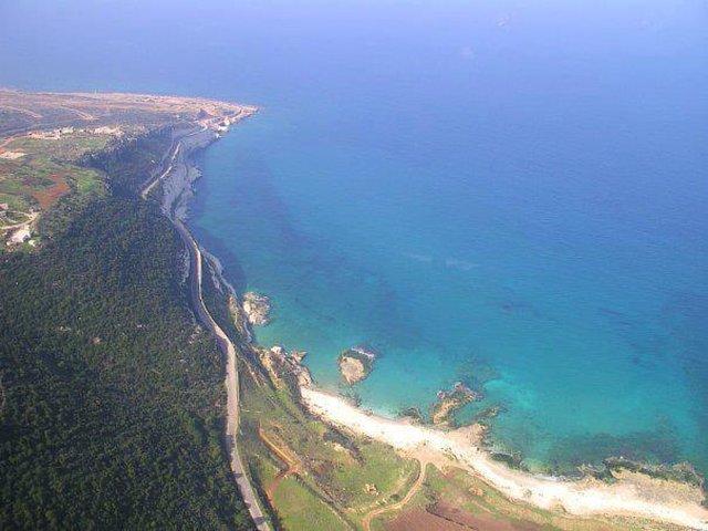 protect Naqura Coast a sanctuary for Turtles