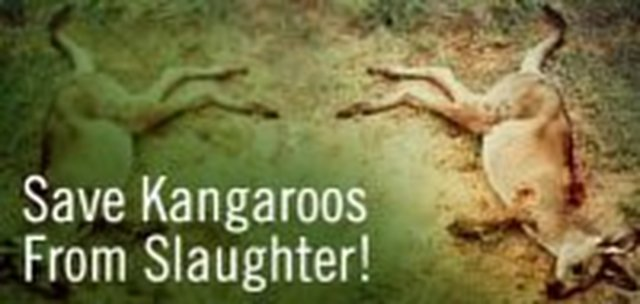 For deletion of kangaroos from menu