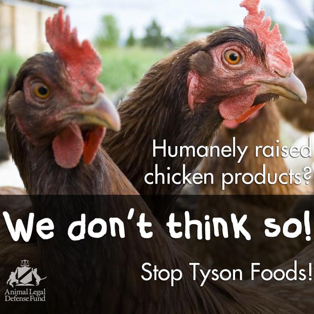 Boycott Tyson Foods!