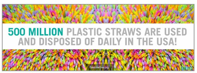 Reduce waste by  going plastic straw-free!